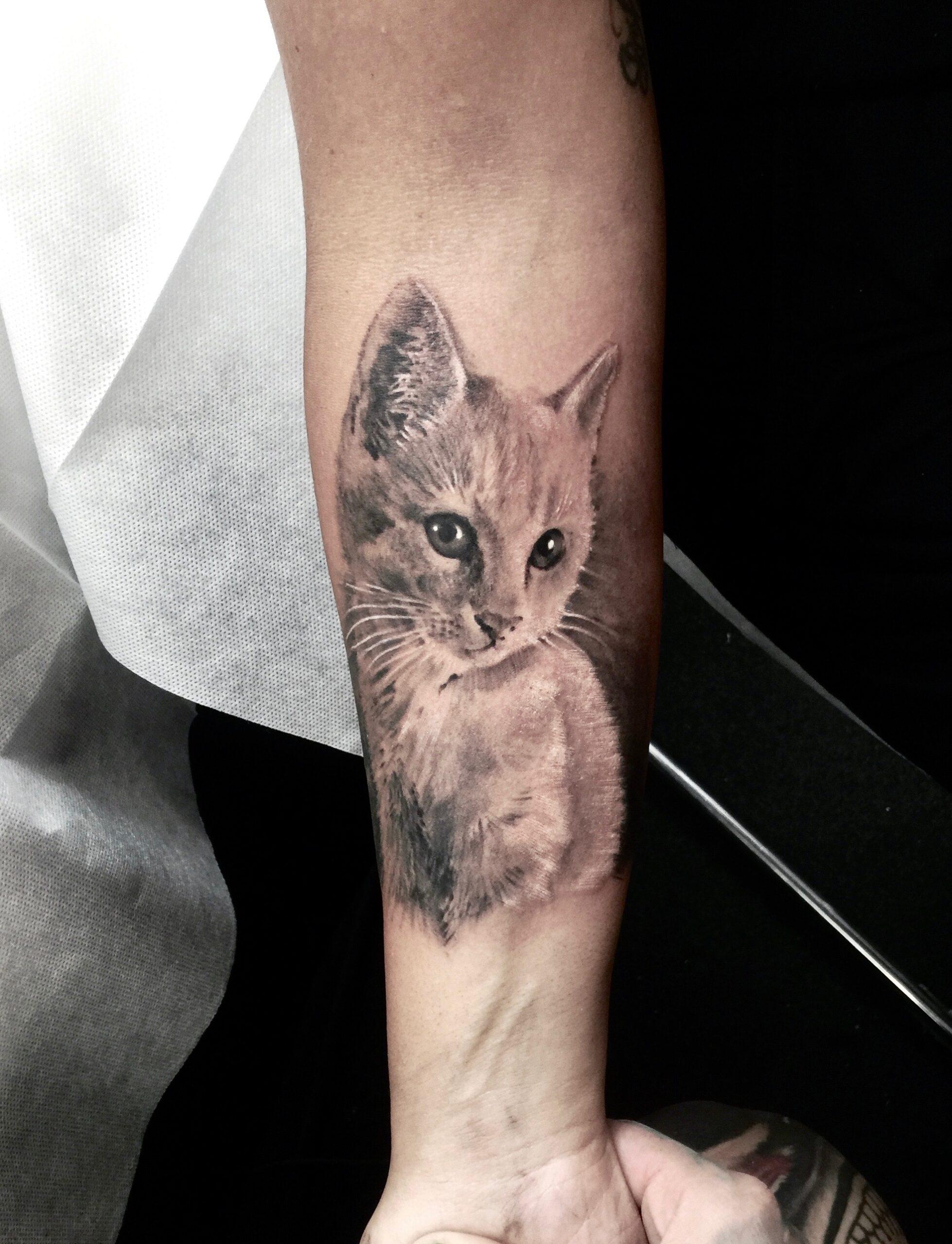 zhuo dan ting tattoo work cat tattoo卓丹婷纹身作品 猫咪纹身 1